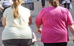 obesity www.mirandasmsblog.com